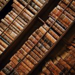 5 business ideas for book lovers